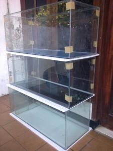 akuarium_baru___terima_request_pembuatan_akuarium_394640_1432198153
